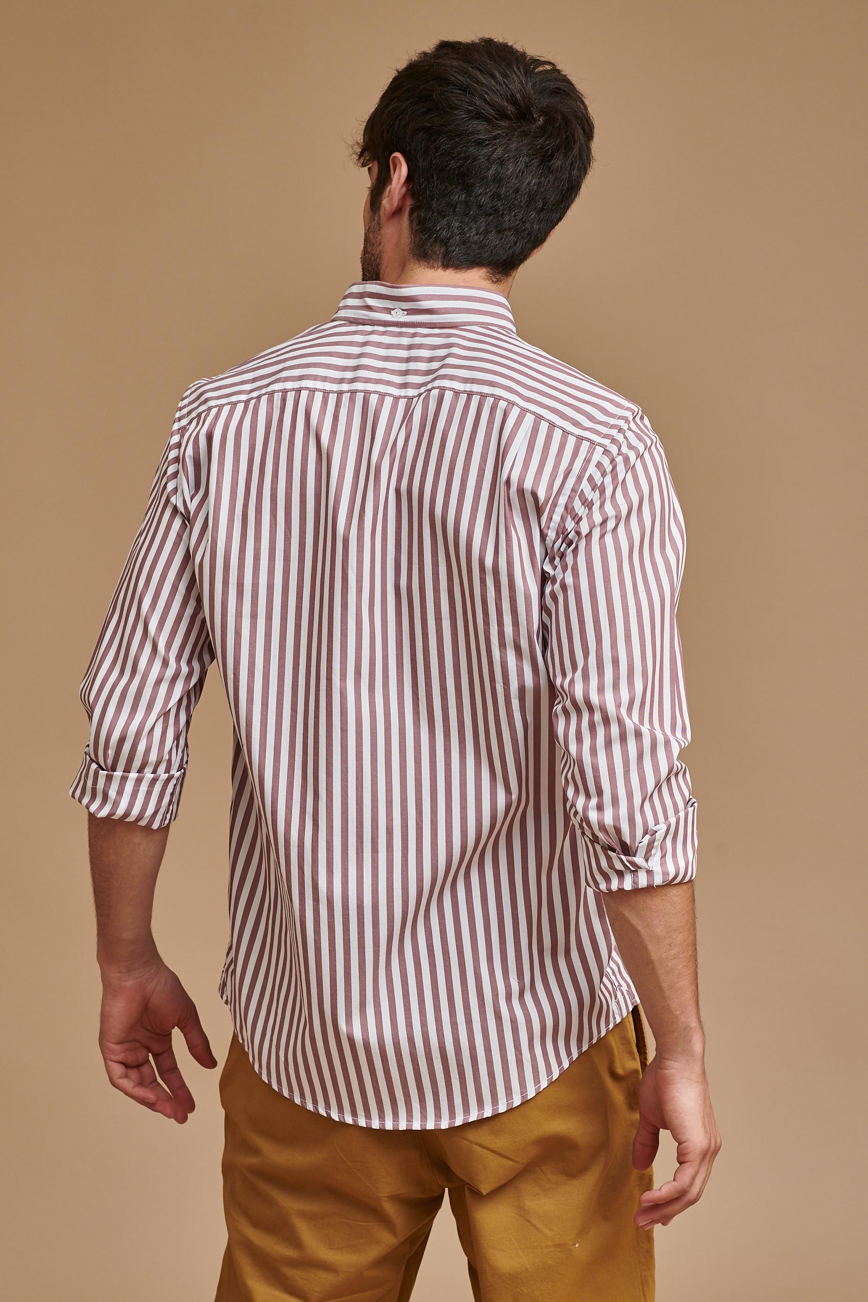 penguin_ls-wide-stripe-shirt-b/d_16-14-2020__picture-15008
